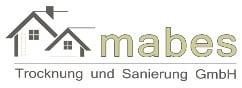 Logo mabes